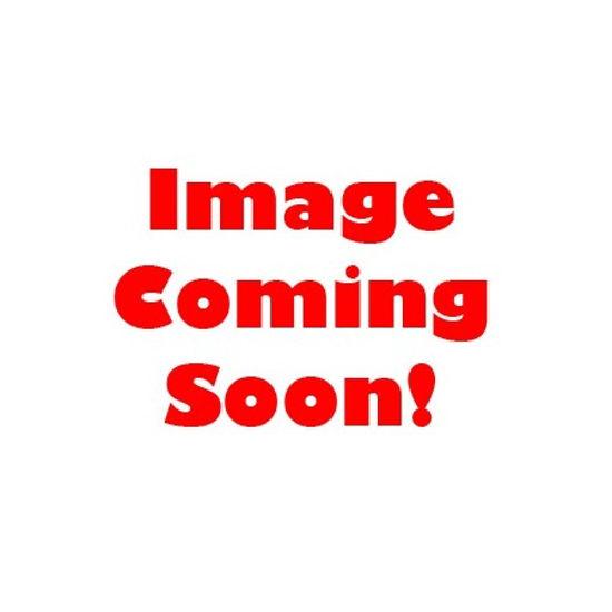 Picture of ALPINE DISINFECTANT  5 LT